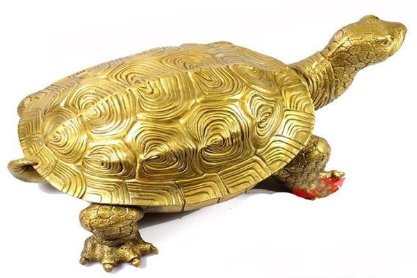 Mơ thấy rùa vàng là điềm báo gì