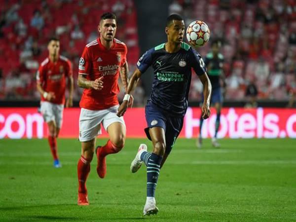Tin thể thao 20/8: MU cử tuyển trạch viên theo dõi trận Benfica vs PSV